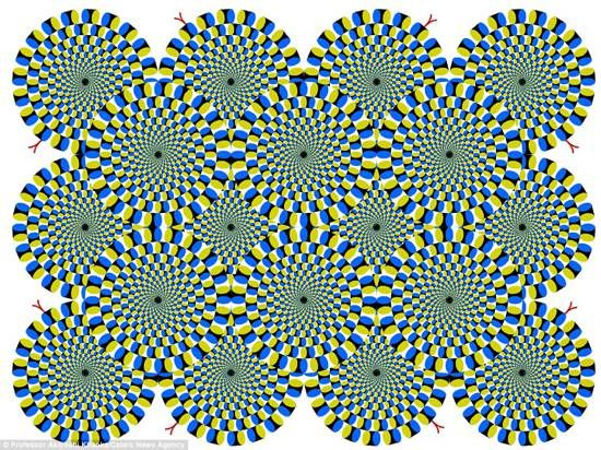 illusioni_ottiche_Akiyoshi_Kitaoka_00-2189-600-450-80